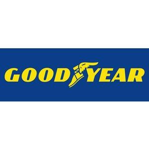 Участники Чемпионата Европы по гонкам на грузовых автомобилях выбрали шины Goodyear