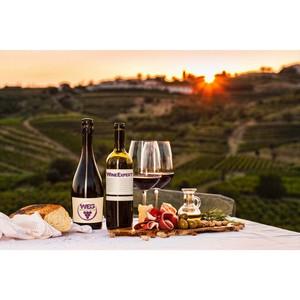 5 причин посетить дегустационные шоу румы «Wine Expert»
