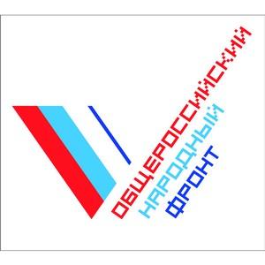 Активисты ОНФ будут представлять интересы петербуржцев в Государственной Думе и Заксобрании города