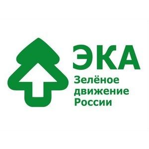 Завершаем год экологии победой и получением двух грантов на реализацию экологических инициатив