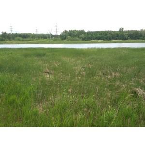ОНФ выступает за сохранение водно-спортивной базы по академической гребле в Сызрани
