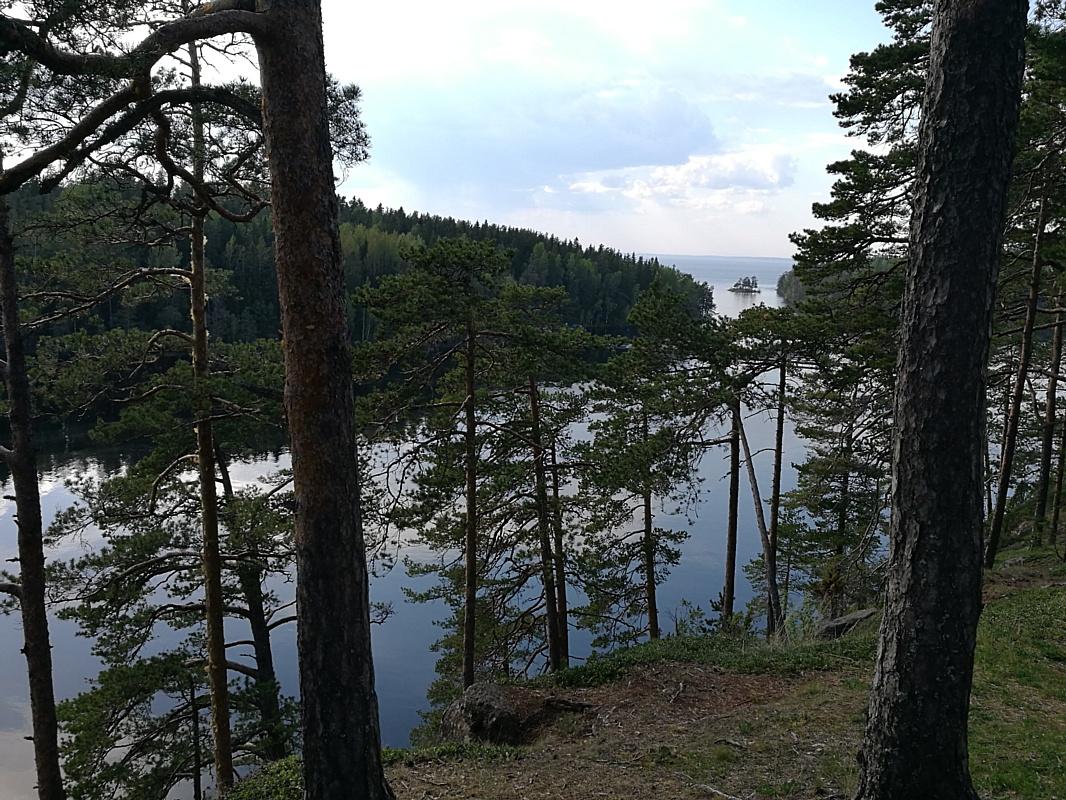 Ах, белый теплоход… Речные круизы — незабываемый отдых!