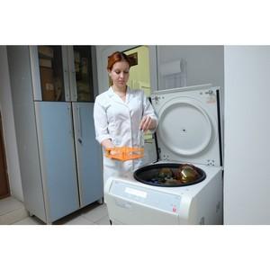 Об обнаружении лекарств в пастеризованном молоке из Краснодарского края
