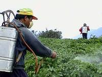 Фальсификация препарата пестицида