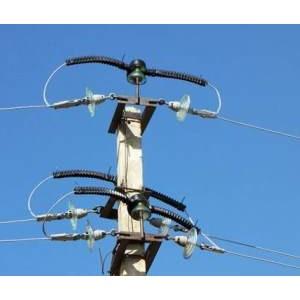 Высоковольтные линии Омска защитят от птиц