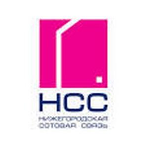 НСС расширила зону покрытия мобильной связи в Неверкинском районе Пензенской области