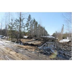 ОНФ попросит проверить законность строительных работ на территории «зеленого щита»