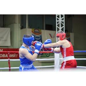 Самарские активисты ОНФ приняли участие в первенстве ПФО по боксу