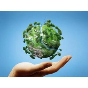 Международный день леса отметили в Измайловском парке