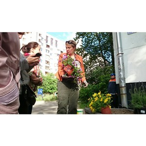 Ландшафтные дизайнеры провели бесплатный городской мастер-класс для жителей Санкт-Петербурга