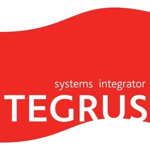 Tegrus занял 13 строчку в списке крупнейших поставщиков решений для госсектора