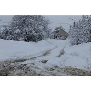 Воронежские активисты ОНФ проверили качество уборки снега в Борисоглебске