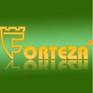 Forteza реализует автообновление программ