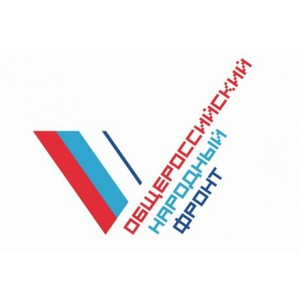По итогам праймериз эксперт ОНФ лидирует по федеральному избирательному округу в Челябинской области