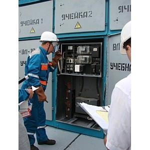 Липецкий район электрических сетей продемонстрировал образцовое противопожарное состояние
