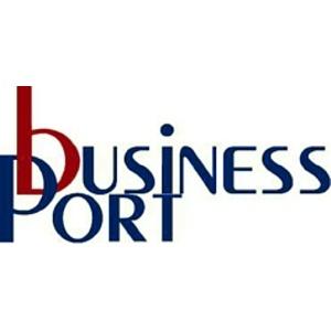 """Компания """"Бизнес Порт"""": аналитический обзор рынка стеновых материалов"""