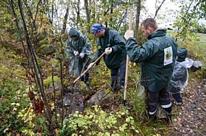 Волонтеры LafargeHolcim приняли участие в республиканской акции «Карелии нужен чистый лес!»