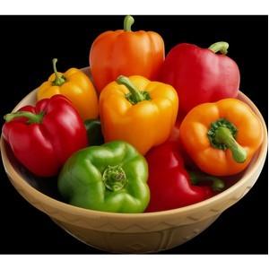 О посевных качествах семян перца