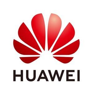 "Летняя программа Huawei Hcia R&S ""вахтовым методом"""