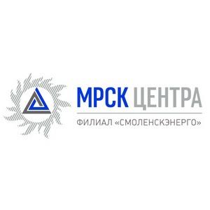 Сотрудники Смоленскэнерго провели «месяц электробезопасности» в районах области