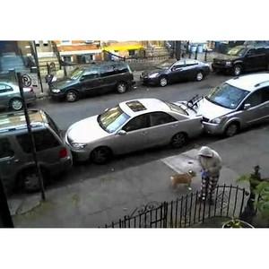 Московские дорожники: «Из-за неправильно припаркованных машин мы убираем одну улицу по 3 дня»