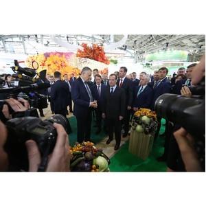 Ленинградская область примет Чемпионат мира по пахоте-2020