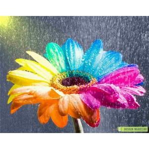 «Радость жизни» делает людей счастливыми