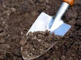 Мышьяк в почве