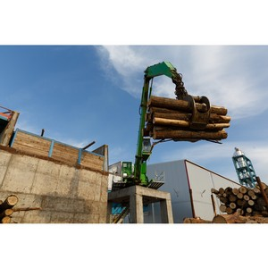 Минлесхоз РТ закупил лесозаготовительное оборудование для поставок древесины на завод «Кастамону»