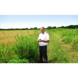 О нарушении требований земельного законодательства