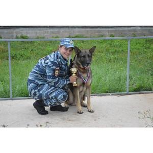 Инспектор-кинолог из Зеленограда одержала победу в московских соревнованиях