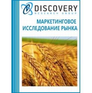 Исследование российского рынка зерновых культур.