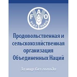 """РУП """"БЗТДиА"""" стало официальным поставщиком ФАО"""