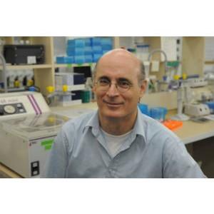 Научно-исследовательская деятельность медицинского центра «Шиба» удостоена знака отличия