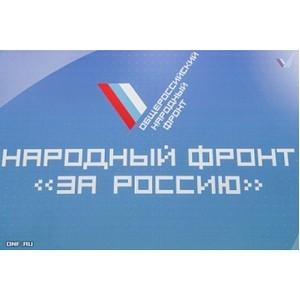 Ульяновские активисты Народного фронта провели презентацию проекта ОНФ «Равные возможности – детям»