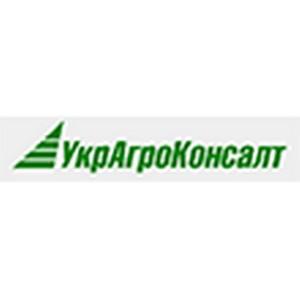 УкрАгроКонсалт: Украина бьет рекорды по экспорту меда
