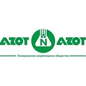 """На кемеровском """"Азоте"""" модернизируют электроподстанцию. Стоимость проекта 40 млн. рублей"""