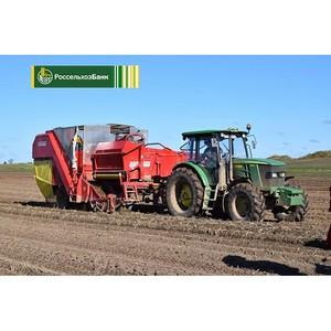 Россельхозбанк выдал первые льготные кредиты сельхозпредприятиям Костромской области