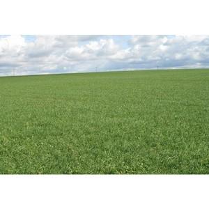 О непроведении агротехнических мероприятий