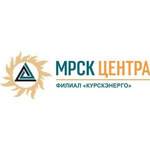 Специалисты Курскэнерго уточнят показания приборов учета потребителей Курска