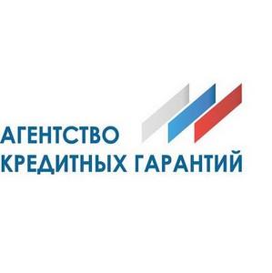 Презентация Агентства кредитных гарантий для предпринимателей России