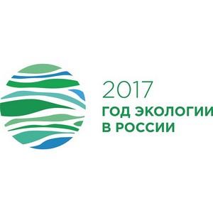 Руководство Минприроды и эксперты обсудят наилучшие доступные технологии утилизации отходов в России