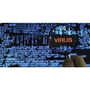Сезон вирусов открыт