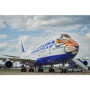 «Полосатый рейс» поднимается в небо