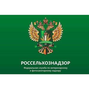 Россельхознадзор поддерживает выставку «MVC Зерно-Комбикорма-Ветеринария-2018»