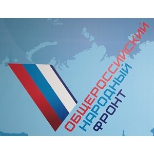 Народный фронт поддерживает принятый закон о банкротстве физлиц
