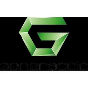 Школа бизнес-тренеров и  T&D менеджеров Generaccio