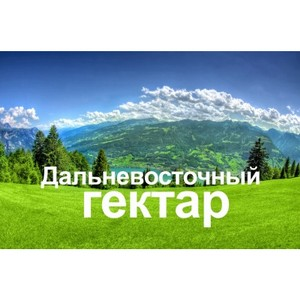 Дальневосточный гектар стал доступен каждому гражданину Российской Федерации