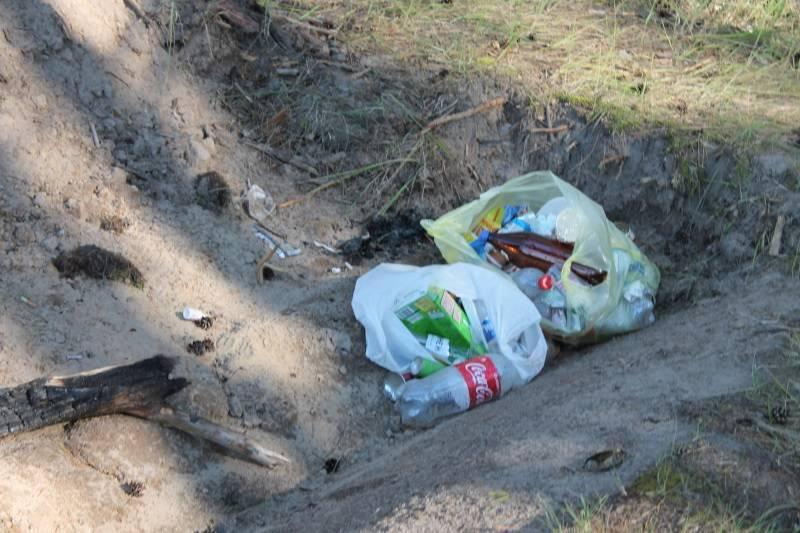Активисты ОНФ Мордовии обеспокоены экологической обстановкой в Новостепановском карьере
