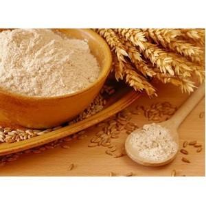 Микробиологические исследования в глютене пшеничном в лаборатории Ростовского филиала ФГБУ «ЦОКЗ»